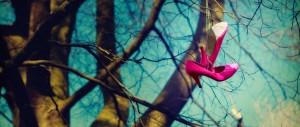 photography aberdeen seaton park